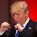 Trump Boxing Match